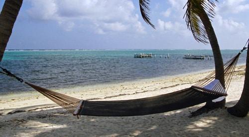 Eine Stoffhängematte zwischen Palmen